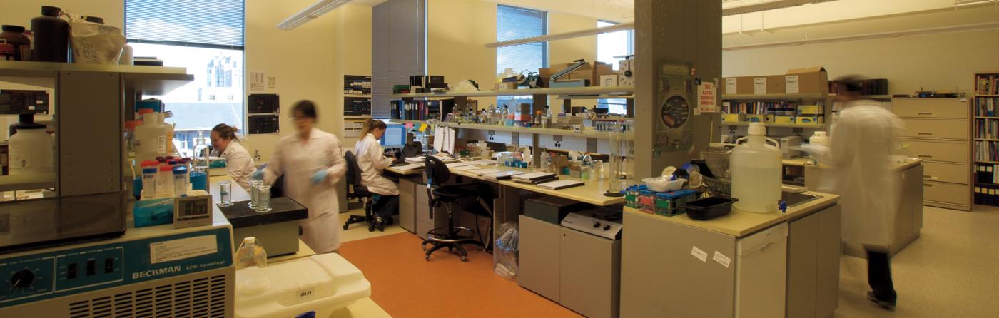 e55c7e5ffe1 Laboratories | ICORD