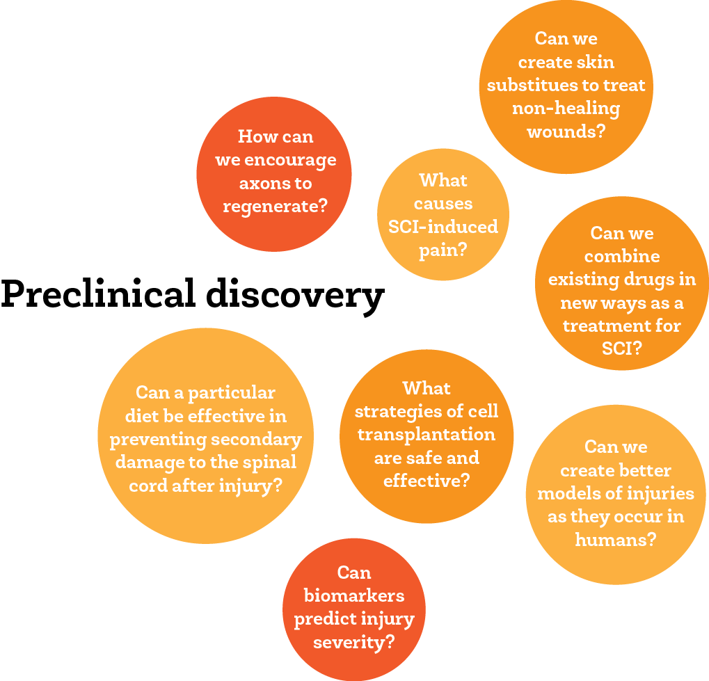 web - preclinical discovery