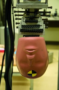 Crash-test head and mechanical neck model used in Dr. Cripton's research