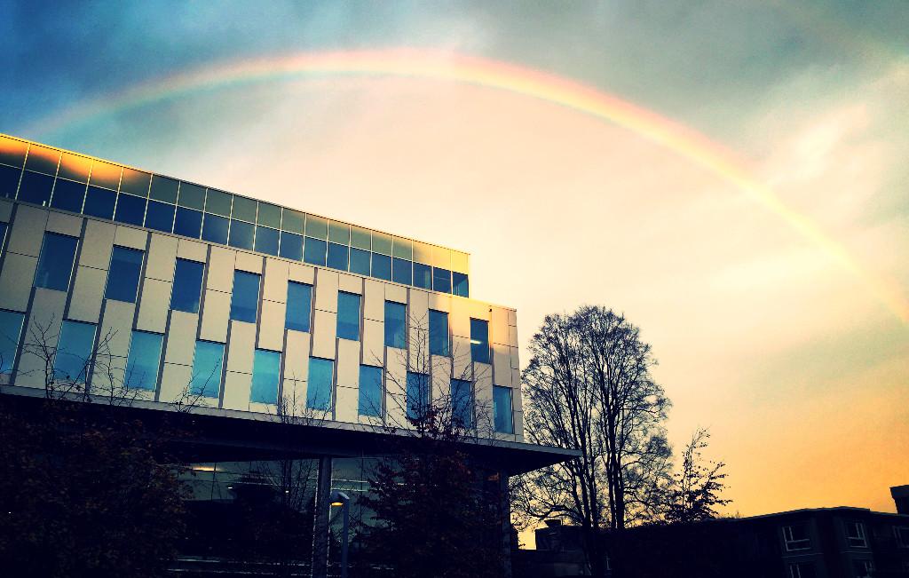 fa2016-rainbow
