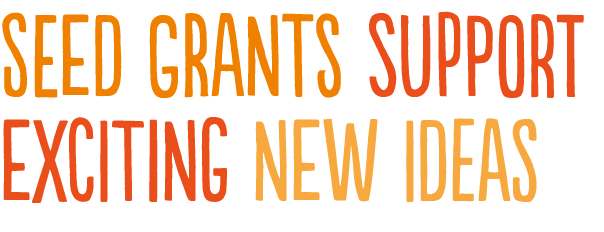 fa2016-seed-grants