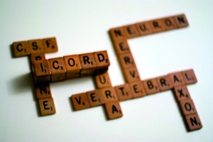 Scrabble letters spell out ICORD and some neuroscience terms