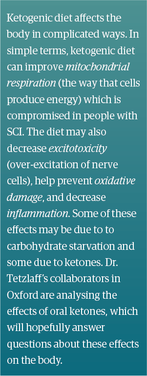 Ketogenic diet affects the body in complicated ways. In simple terms, ketogenic diet can improve mitochondrial respiration (the way that cells produce energy) which is compromised in people with SCI. The diet may also decrease excitotoxicity (over-excitation of nerve cells), help prevent oxidative damage, and decrease inflammation. Some of these effects may be due to carbohydrate starvation and some due to ketones. Dr. Tetzlaff's collaborators in Oxford are analysing the effects of oral ketones, which will hopefully answer questions about these effects on the body.